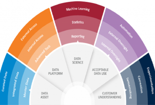Data and Data Science Capability as a Strategic Asset