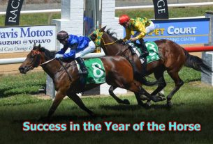 SUE ARDEN: Success in the Year of the Horse